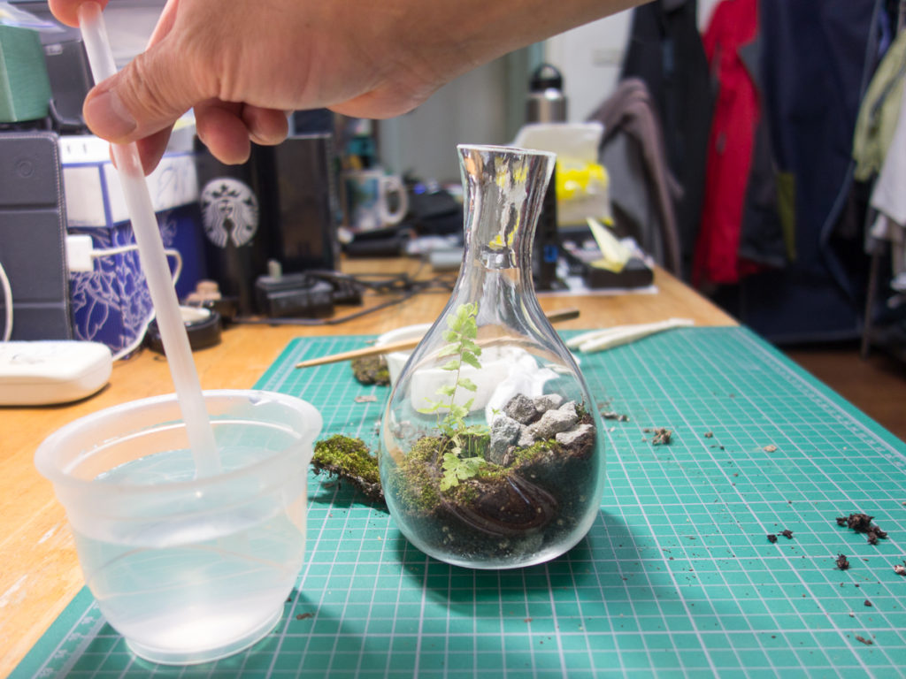 Adding water to everything with a straw to the bottle garden.